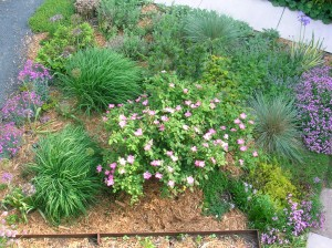 Drought tolerant plants require less watering and mean low-maintence landscaping